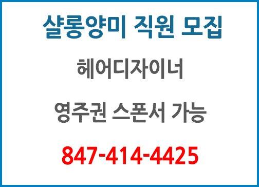 샬롱양미  직원 모집 헤어디자이너/리셉션니스트/인턴직원