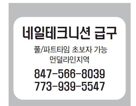 네일테크니션급구-5547